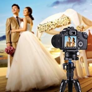 PULUZ aluminiumlegering 360 graden rotatie Panorama bal hoofd met Quick Release plaat voor Camera Tripod Head