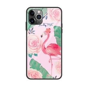 Voor iPhone 11 kleurrijke geschilderde glazen kast (Flamingo)
