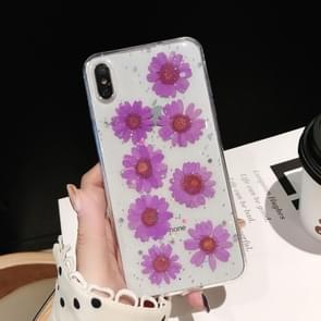 Daisy patroon echte gedroogde bloemen transparante zachte TPU cover voor iPhone XR (paars)