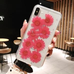Daisy patroon echte gedroogde bloemen transparante zachte TPU cover voor iPhone XR (rood)