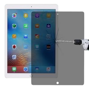 0.33mm 9H 2.5D Privacy Anti-glare Explosion-proof Tempered Glass Film for iPad Pro 12.9 (2017) / (2015)