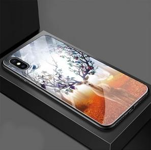 Fruit Elk Pattern Glass Case for iPhone XR