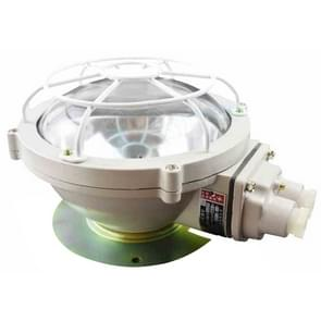 BXL 220V Explosion-proof Annular Ceiling Lamp Fluorescent Lamp