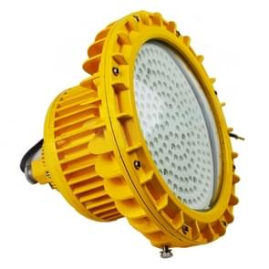 40W Gas Station Workshop Warehouse Maintenance-free LED Explosion-proof Lamp Floodlight