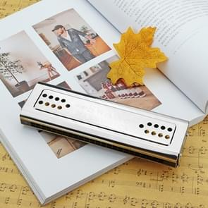 Swan SW24-12A 24-holes Double-sided Harmonica Beginner Polyphony Box Adult Children Beginners Performance