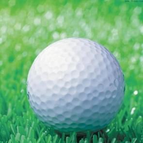 Synthetische Rubber Driving Range golfballen  dubbele laag leeg elastische golfballen