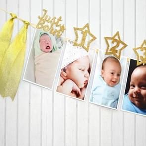 Age Celebration Decoration Background Pentagram Photo Folder 1-12 Months Baby Photo Record Party Banner Pull Flag