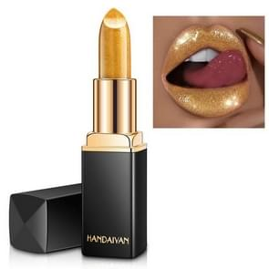 HANDAIYAN Brand Professional Lips Makeup Waterproof Long Lasting  Lipstick(01)