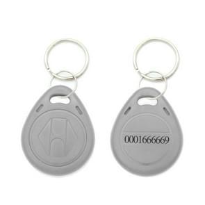 10 stuks 125KHz TK/EM4100 proximity ID kaart Chip Sleutelhanger sleutel ring (grijs)