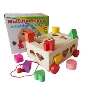 Childhood Early Education Toys Geometry Cognition Building Block Multifunctionele 15-Hole Intelligence Box