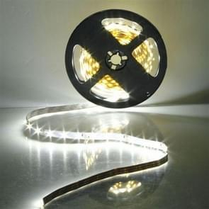 YWXLight 5M 300 LED's SMD 3528 Flexibel LED Strip light niet-waterdicht DC 12V (Cool White)