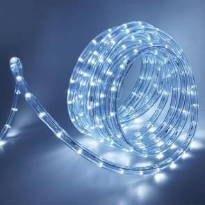 YWXLight LED Ronde Tweedraads licht snaarverlichting waterdicht neon flexibel licht  EU-stekker (Kleur: Cool Wit Formaat: 10m)